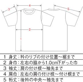 Tシャツのサイズの見方(測り方)