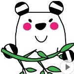 アニメーションスタンプ「動くボーダーパンダ」販売中です♪